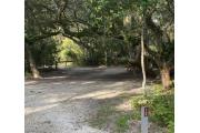 Rear view of sandy site twelve showing edge of picnic table, lantern post nestled amongst the shady live oak and maritime hammock in Anastasia State Park.