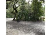 View of sandy site twelve showing live oak trees, picnic table and fire ring under shady maritime hammock in Anastasia State Park.