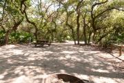 Rear view of sandy site fourteen showing edge of fire pit, picnic table, electric hookup and wooden railings nestled amongst the shady live oak and maritime hammock in Anastasia State Park.