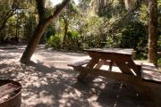 Picnic table and fire ring nestled under the shady live oak trees and maritime hammock on site seventeen's sandy pad in Anastasia State Park.