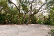 View of sandy site eighteen showing live oak trees, picnic table, fire ring and wooden railings under shady maritime hammock in Anastasia State Park.