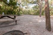 Rear view of sandy site 20 showing edge of fire ring, picnic table and electric hookup nestled amongst the shady live oak and maritime hammock in Anastasia State Park.