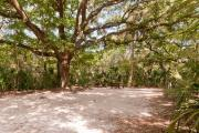Frontal view of sandy site 136 showing picnic table and electric hookup with live oak trees nestled under shady maritime hammock in Anastasia State Park.