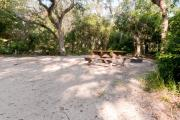 Side view of sandy site 25 showing picnic table, fire ring and live oak trees nestled under shady maritime hammock in Anastasia State Park.