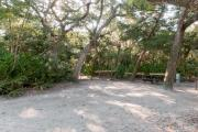 Side view of sandy site 26 showing picnic table, wooden railings and live oak trees nestled under shady maritime hammock in Anastasia State Park.