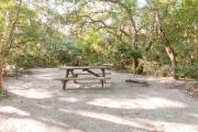 Picnic table and fire ring nestled under the shady maritime hammock on site 29's sandy pad in Anastasia State Park.