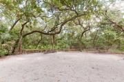 Side view of sandy site 35 showing picnic table, wooden railings, fire ring and live oak trees nestled under shady maritime hammock in Anastasia State Park.