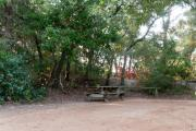 view of sandy site 92 showing picnic table and wooden railing with live oak trees nestled under shady maritime hammock in Anastasia  State Park