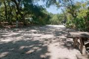 Rear view of sandy site 96 showing picnic table and electric hookup nestled under the shady live oak trees and maritime hammock in Anastasia State Park.
