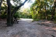 Rear view of sandy site 104 showing picnic table nestled under the shady live oak trees and maritime hammock in Anastasia State Park.