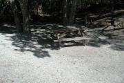 Side view of sandy site 104 showing picnic table with live oak trees nestled under shady maritime hammock in Anastasia State Park.