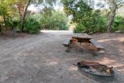 view of sandy site 105 showing picnic table, fire ring, and water hookup nestled under the shady live oak trees and maritime hammock in Anastasia State Park.