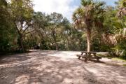Rear view of sandy site 107 showing picnic table nestled under the shady live oak trees and maritime hammock in Anastasia State Park.