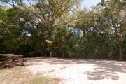 Side view of sandy site 107 showing picnic table, electric and water hookups with live oak trees nestled under shady maritime hammock in Anastasia State Park.
