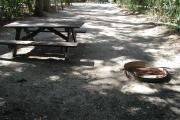 Rear view of sandy site 110 showing picnic table and fire ring with live oak trees nestled under shady maritime hammock in Anastasia State Park.