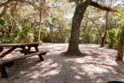 Rear view of sandy site 111 showing picnic table and fire ring nestled under the shady live oak trees and maritime hammock in Anastasia State Park.
