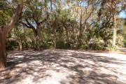 Frontal view of sandy site 111 showing picnic table and electric and water hookups with live oak trees nestled under shady maritime hammock in Anastasia State Park.