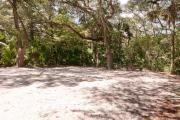 Side view of sandy site 111 showing picnic table and fire ring with live oak trees nestled under shady maritime hammock in Anastasia State Park.