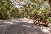 Rear view of sandy site 119 showing picnic table nestled under the shady live oak trees and maritime hammock in Anastasia State Park.