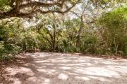 Frontal view of sandy site 123 showing picnic table and electric and water hookups nestled under the shady live oak trees and maritime hammock in Anastasia State Park.