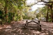 Rear view of sandy site 128 showing picnic table and electric and water hookups nestled under the shady live oak trees and maritime hammock in Anastasia State Park.