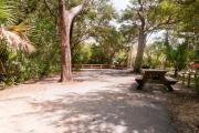 Rear view of paved site 133 showing picnic table nestled under the shady live oak trees and maritime hammock in Anastasia State Park.