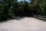 Photo: Buttonwood: Partially shaded gravel campsite with picnic table and grill, bordered by a wood fence and surrounded by bushes. Coconut palm leans into the site from the right.