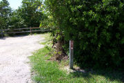 Photo: Buttonwood: Site number post with white number and arrow on a brown background, bushes and fence in background.