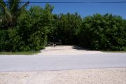 Photo: Buttonwood: Paved road with a campsite on the other side, bushes and fences border site.
