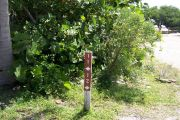 Photo: Buttonwood: Site number post with white numbers and arrows on a brown background, bushes in background.