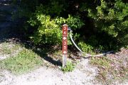 Photo: Buttonwood: Site number post with white numbers and arrows on a brown background, bushes in background