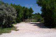Photo: Buttonwood: Partially shaded gravel campsite with picnic table and grill, backed by a wood fence and surrounded by bushes.