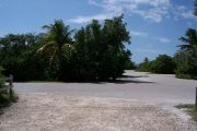 Photo: Buttonwood: Paved road with a campsite on the other side, bushes partially hide site across road