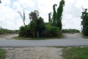 Photo / Sandspur: Paved road with two campsites on the other side, bushes surrounding site