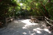 Photo / Sandspur: Shaded sandy campsite with picnic table and grill, bordered by a wood fence and surrounded by trees.