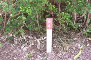 Photo / Sandspur: Site number post with white number and arrow on a brown background, bushes in background