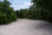 Photo: 073, BAYSIDE: Small, sunny, gravel campsite with picnic table surrounded by trees..