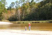A small child leads their mother on a white sandy beach along the tea colored water of the Blackwater River.