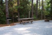 View of a fire ring and picnic table in shady area.