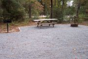View of campsite picnic table and fire ring.