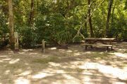 This view shows the gray electrical box, water spigot, brown metal ground grill, and wooden picnic table. The site is heavily shaded with green vegetation. Soil is tan with sparse green grass. Some tree roots are visible to the left near the grill and picnic table.