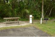 This view shows a Cabbage Palm and a tree lining the paved driveway. To the right is the recreation building shuffle board court, scoreboard and restroom facility. It has an open view of the campground.  The neighboring site's picnic table is to the right.