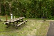 This view from the site shows a paved front road, wooden picnic table to the right. A score board, shuffle board, and restroom facility surrounded by Royal Palms and other trees. A blue tent is in the distance. Firewood shed is at center right.