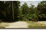 This site is open, sunny and with limited shade. The site marker is to the right. A brown ground grill, gray electrical box, water spigot & picnic table are to the left. Palms and green wooded vegetation are also at the back of the site. A guide wire is to the left.