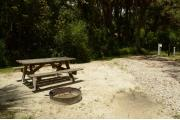 This view from the back of the site shows wooded camping loops shaded by Palms and Oak trees. Picnic tables are scattered. Site marker is to the right. The driveway is gray pebbles lined with green grass. Brown ground grill and wooden picnic table are to the right.