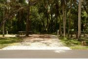 The wooden site marker is at the right. This site has green grass and gray soil. It's shaded and has green vegetation. Cabbage Palms and Oak trees scatter the site. The brown metal ground grill, wooden picnic table, gray electrical box and water spigot are center.