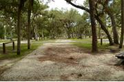 This view shows a wooden picnic table to the left. A brown ground grill, water spigot and gray electrical box is to the back. A Pine Tree to the right of the picnic table. The soil is gray/tan color. The grass is green. Palms, Oak & Pine trees are in the background.