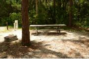 This view from the back of the site shows the wooded camp ground shaded by Palms, Pine & Oak trees. Picnic tables are scattered. Site marker is to the left. The driveway is gray pebbles lined with green grass. This site is shaded.