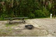 This view from the back of the site shows the wooded camp ground shaded by Palms, Pine & Oak trees. Picnic tables are scattered. Site marker is to the right. The driveway is gray pebbles lined with green grass. A Motorhome and a white truck are in the distance.
