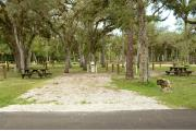 The site marker is to the right. Oak trees and Cabbage Palms scatter this site. A brown ground grill, gray utility box & wooden picnic table are to the right. The soil is gray sand & sparse green grass with scattered pine needles.